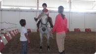 equitacao_2011_11
