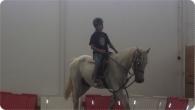 equitacao_2011_17