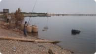 pesca_2011_12