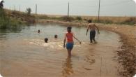 pesca_2011_22