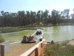 Badoca Safari Park :: badoca_85